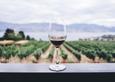 Wine Glass 400x284
