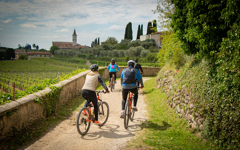 Bardolino Route: between the lake and wineries