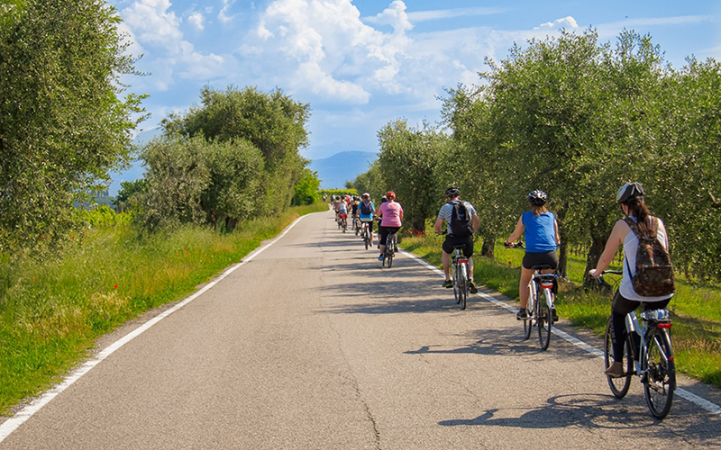 Cycling between the Garda and the Veronese wineries