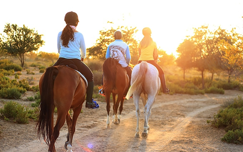 Horseback riding and wine tasting