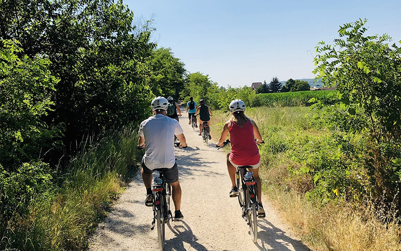 Explore the Lands of Custoza with E-bikes