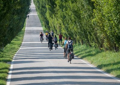 custoza bike tour experience